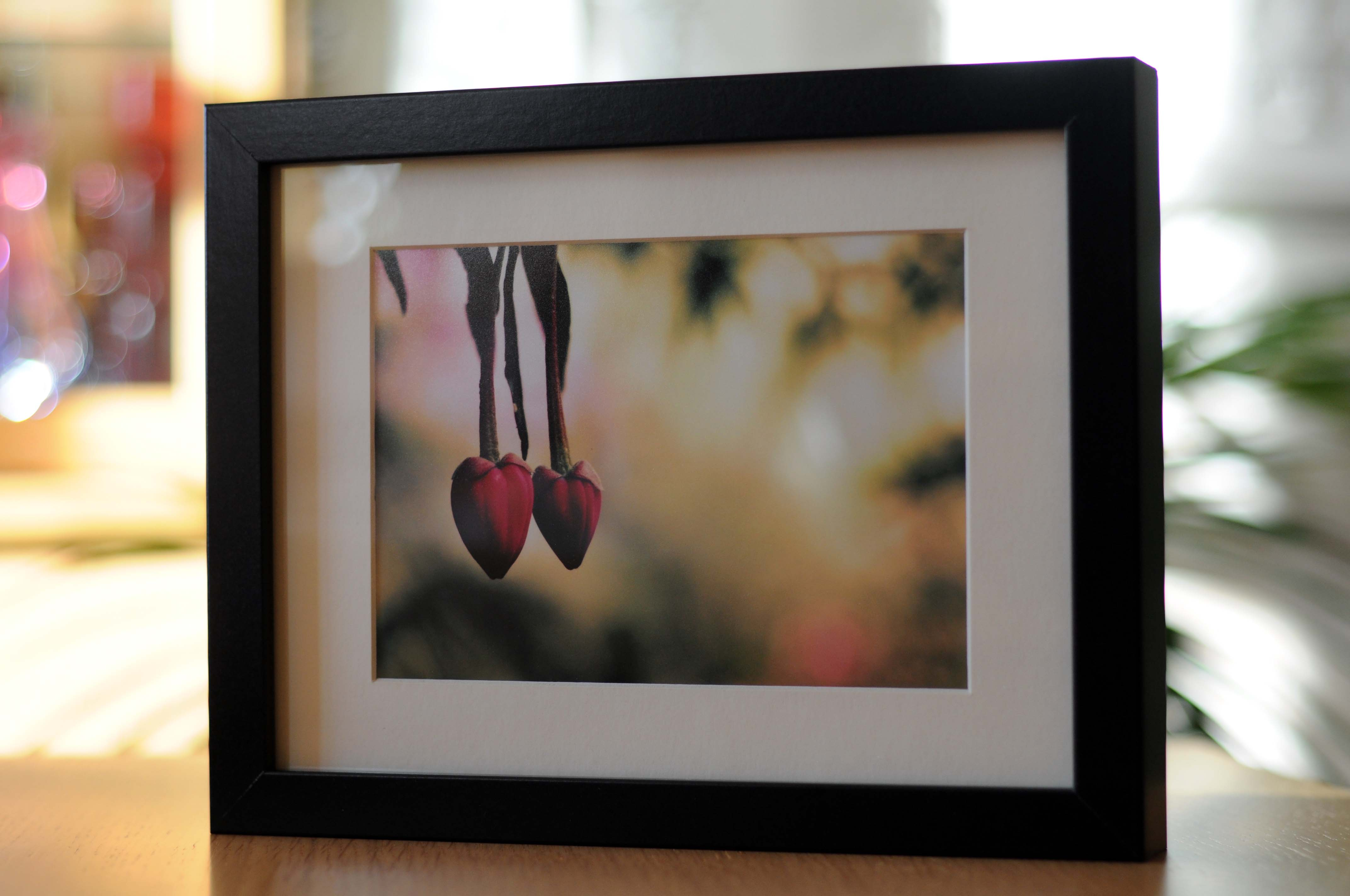 Prints louise holgate photography large rectangular jeuxipadfo Choice Image